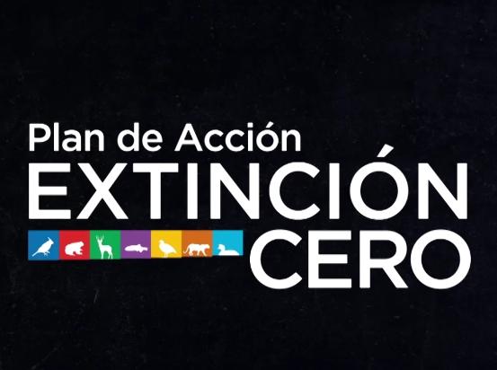 Plan Extinción Cero – Conservación del yaguareté en la región chaqueña